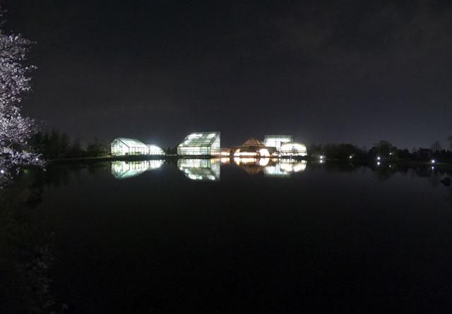 夜間営業時、湖面に映る富山県植物園の建物