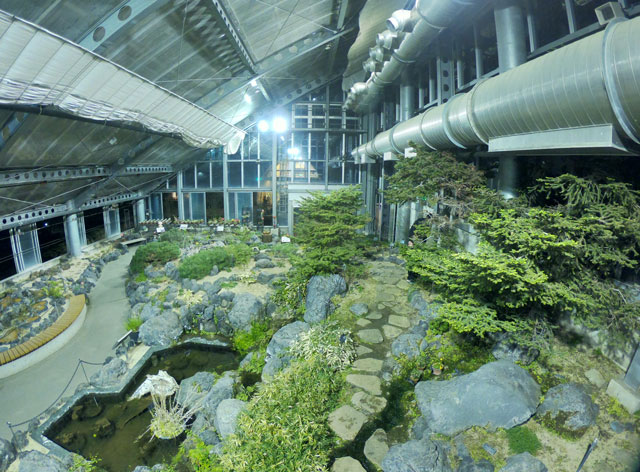 富山県植物園の温室の植物