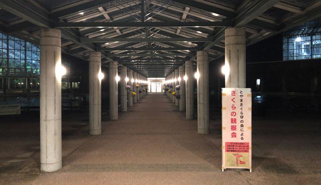 富山県植物園の夜間入場の通路