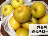【呉羽梨 直売所の場所】安い値段で呉羽梨を買うなら直売所ロードへGO!!