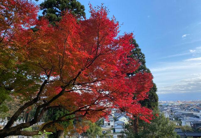 富山市呉羽山「長慶寺五百羅漢」の紅葉と青空
