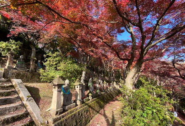 富山市呉羽山「長慶寺五百羅漢」の紅葉と緑