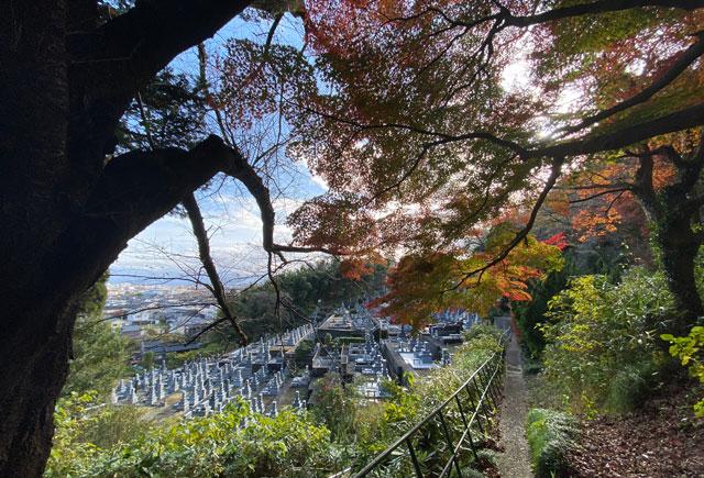 富山市呉羽山「長慶寺五百羅漢」の紅葉とお墓