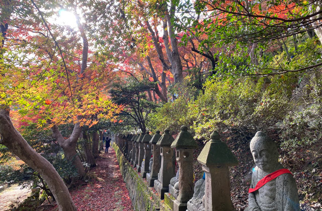 富山市呉羽山「長慶寺五百羅漢」の紅葉と写真女子