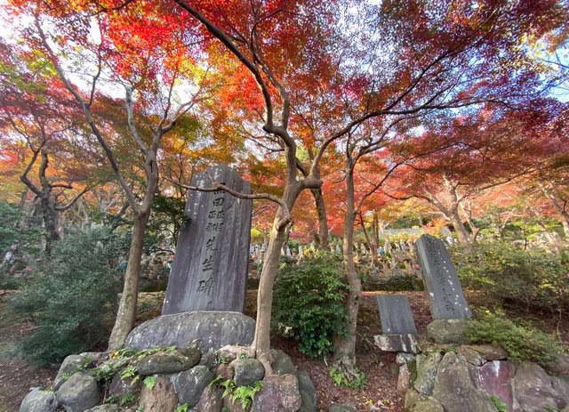 富山市呉羽山「長慶寺五百羅漢」の紅葉と石碑