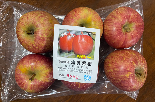 魚津市の海の駅蜃気楼で開催される魚津の朝一で買った加積りんご