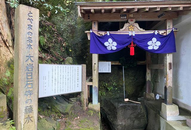 上市町の大岩山日石寺の藤水
