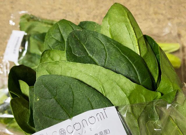食材宅配サービス「ココノミ」の新鮮なほうれん草