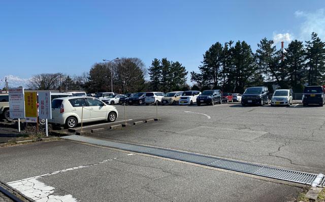 富山一早く咲く、海岸通「三菱レイヨン敷地内」の河津桜の駐車場の入口