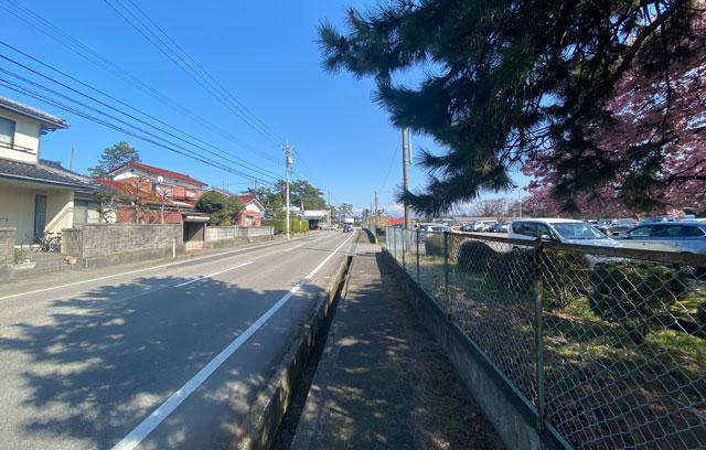 富山一早く咲く、海岸通「三菱レイヨン敷地内」の河津桜の場所