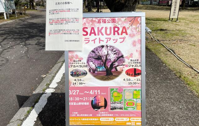 富山さくらの名所70選、富山県富山市五福公園の桜イベント