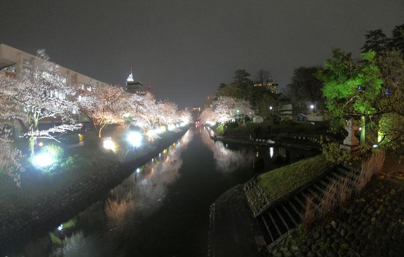 富山市の松川べりの夜桜ライトアップと松川公園