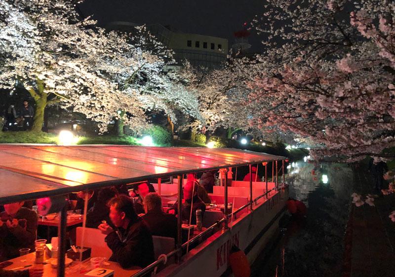 松川遊覧船の松川夜桜クルーズ
