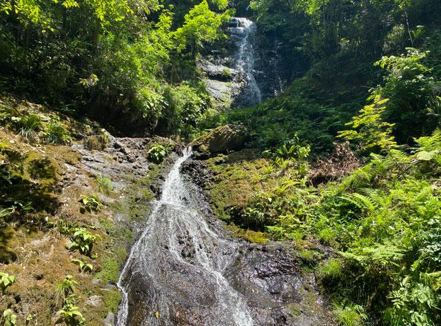 富山県上市町の「笠取の滝」アップ