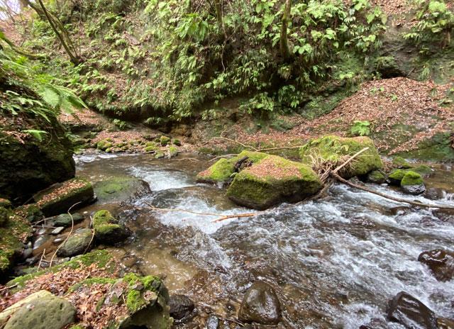 大岩山日石寺すぐ近くの千巌渓の渓流