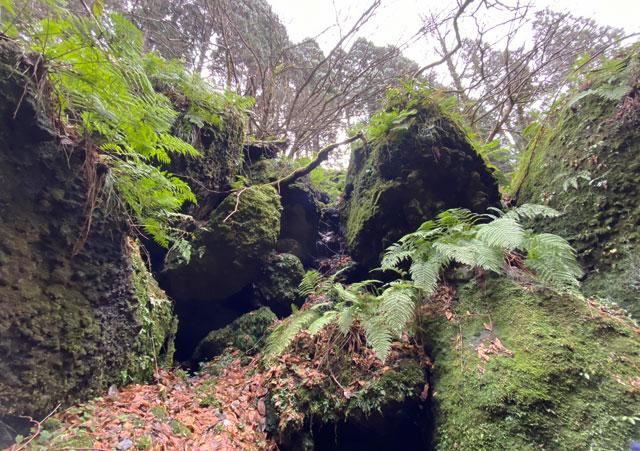 大岩山日石寺すぐ近くの千巌渓の迫力満点の岩