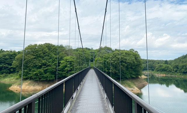 古洞の森近くの古洞池の吊り橋どんぐり橋の真ん中