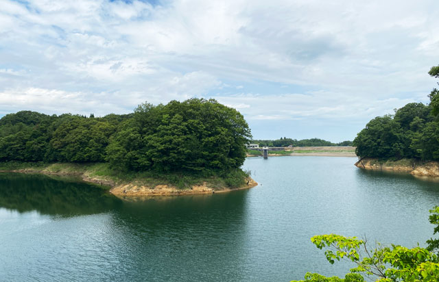 古洞の森近くの古洞池の吊り橋どんぐり橋からの景色