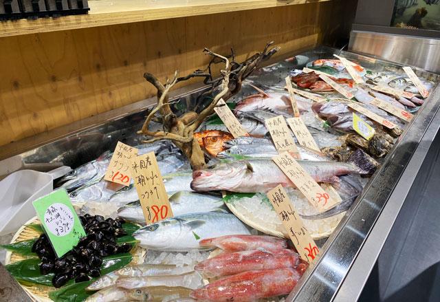富山市の総曲輪ベース、魚訓(うおとき)の魚