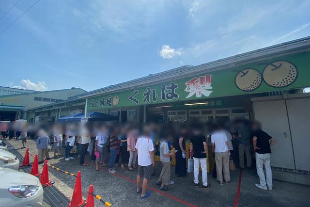 富山県の特産品「呉羽梨」の直売所「JAなのはな梨選果場」