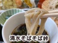 【清水そばそば峠】地場で採れた山菜の天ぷらが最高【富山市山田村の蕎麦屋】