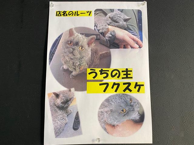 富山市五福のラーメン屋「麺処 福助」の猫フクスケ
