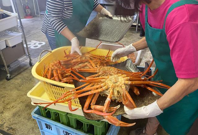 富山県射水市の観光施設「新湊カニ小屋」の茹でたての蟹
