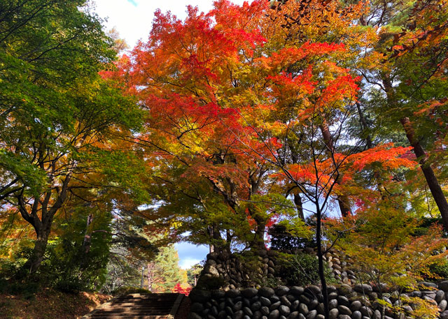 富山市旧大沢野の新緑と紅葉の名所「寺家公園」の石塀と階段と紅葉