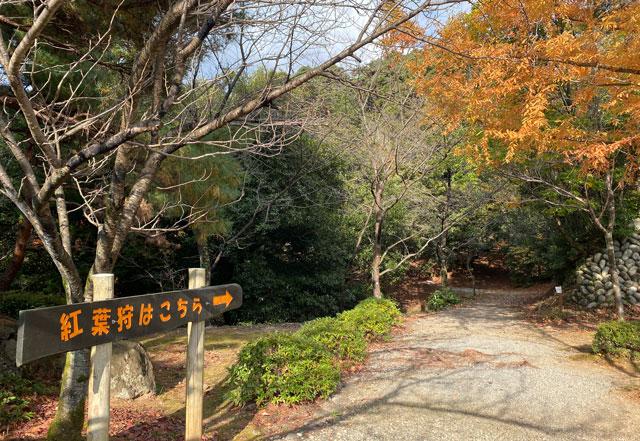 富山市旧大沢野の新緑と紅葉の名所「寺家公園」の紅葉狩り