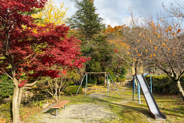 富山市旧大沢野の新緑と紅葉の名所「寺家公園」の遊具広場の紅葉