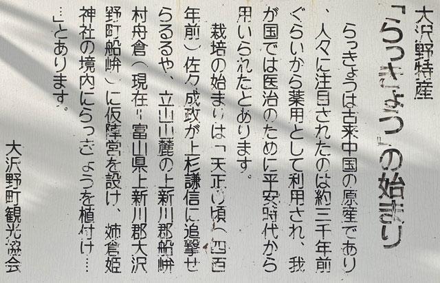 富山市旧大沢野の新緑と紅葉の名所「寺家公園」の大沢野特産「らっきょう」の説明看板