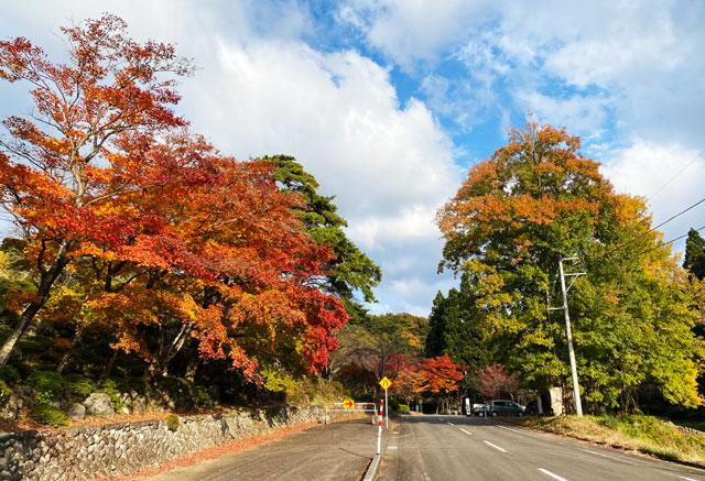 富山市旧大沢野の新緑と紅葉の名所「寺家公園」の駐車場付近の紅葉