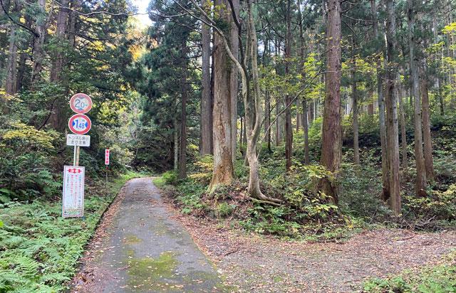 富山市旧大沢野の新緑と紅葉の名所「寺家公園」の心霊スポット「池ノ原トンネル」への道2