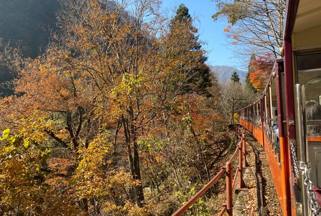 富山県黒部市宇奈月町の黒部峡谷鉄道トロッコ電車の紅葉の車窓