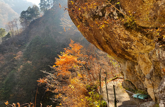 富山県黒部市宇奈月町の秘湯黒薙温泉の紅葉と岩