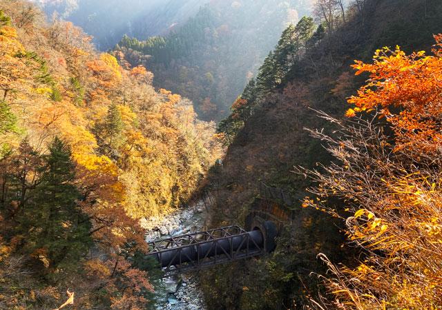富山県黒部市宇奈月町の秘湯黒薙温泉の紅葉3