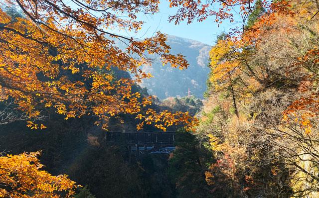 富山県黒部市宇奈月町の秘湯黒薙温泉の紅葉と水路橋