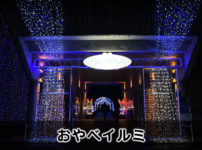 【小矢部イルミ】クロスランドおやべの大規模イルミネーション!
