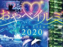 【小矢部イルミ2020】クロスランドおやべの大規模イルミネーション!