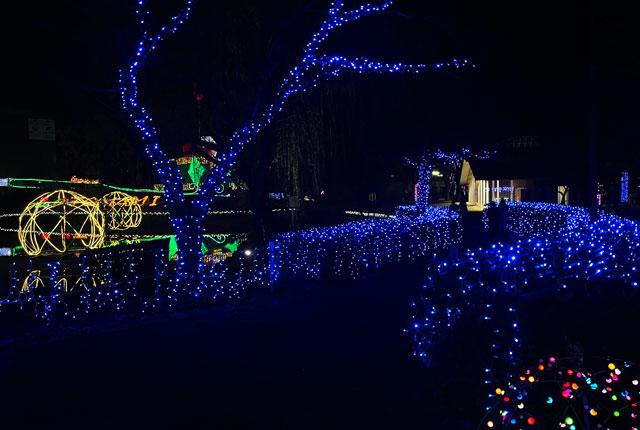 砺波市のイルミネーション「チューリップ公園KIRAKIRAミッション」の青いイルミネーション1