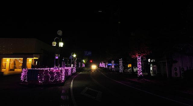 砺波市のイルミネーション「チューリップ公園KIRAKIRAミッション」の入口前の道路イルミネーション