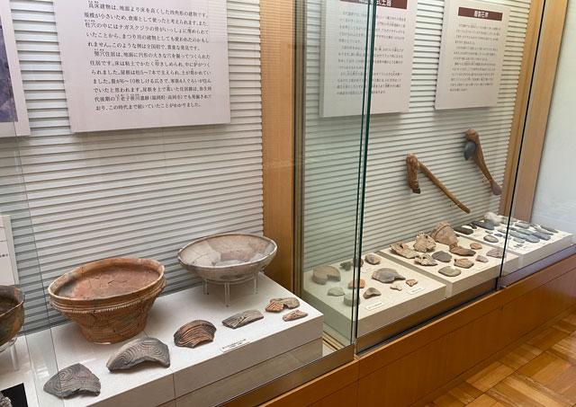 富山市呉羽丘陵の「北代遺跡」の跡地にある「北代縄文広場」の北代縄文館の展示室内の磨製石斧