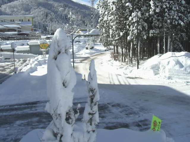 立山山麓スキー場(らいちょうバレーエリア・極楽坂エリア)宇奈月大沢野線 富山市原の道路状況