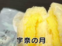 【宇奈の月】食べてみた!富山県宇奈月温泉のお土産【萩の月そっくり】