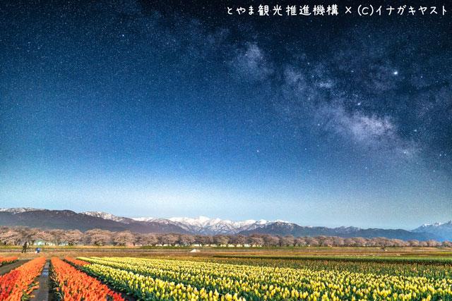 富山の写真家イナガキヤストさんが撮影した朝日町舟川の春の四重奏