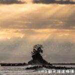【イナガキヤスト富山の本気】写真とクリアファイル無料入手【撮影スポット】