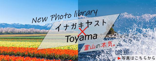 とやま観光ナビのフォトライブラリー(イナガキヤスト)