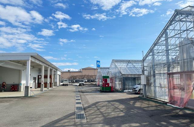 富山市のまちなかで苺狩りができる「徳徳ハウス」の施設