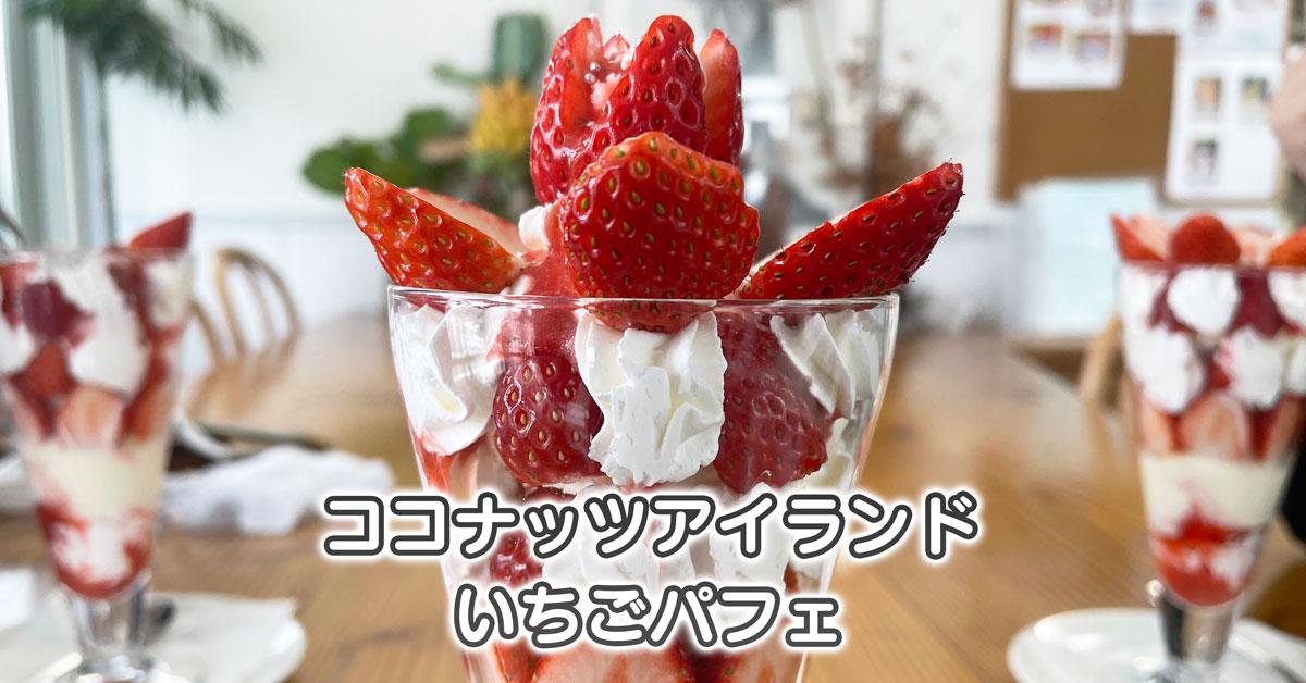 【ココナッツアイランド】映える苺パフェが大人気【富山市婦中】