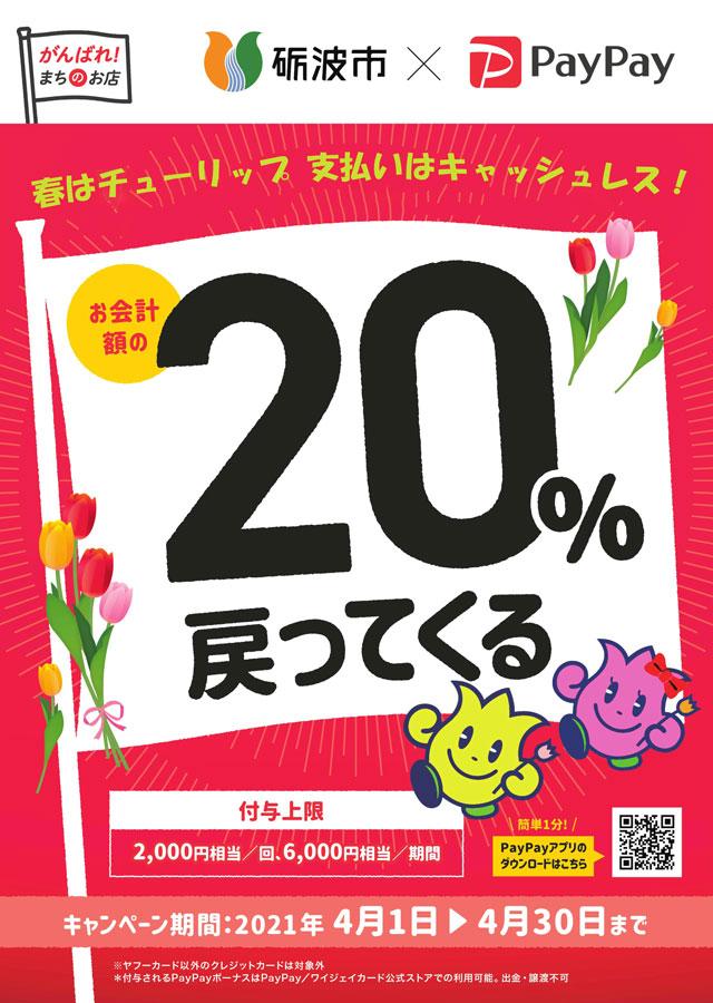 射水市×PayPay20%還元キャンペーンのポスター